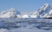Antarctic 1