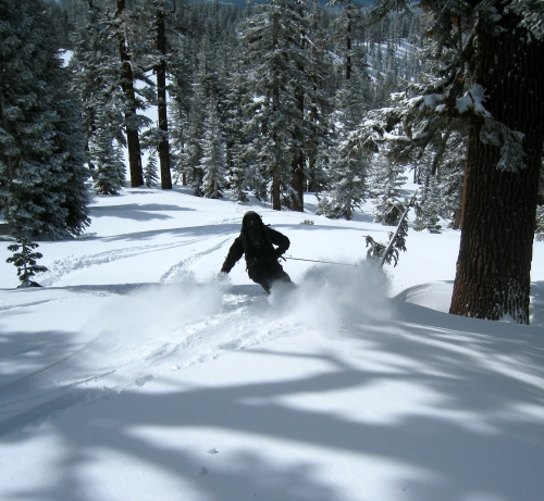 pow skiing in the bc