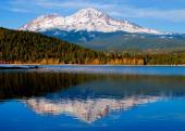 shasta_shot-1001small.jpg