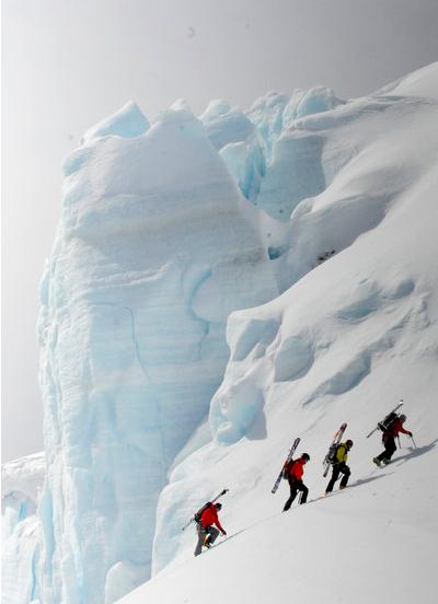 Antarctic 7
